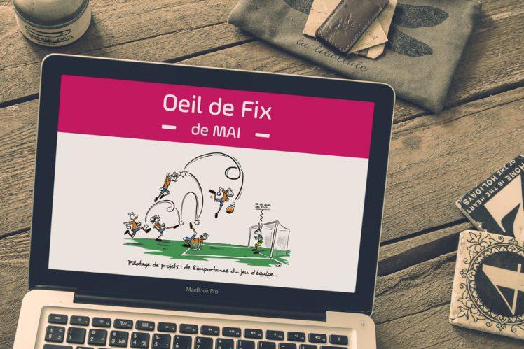 Oeil de Fix - vignette - coupe du monde - football - gestion des équipes - ressources - équipe projet