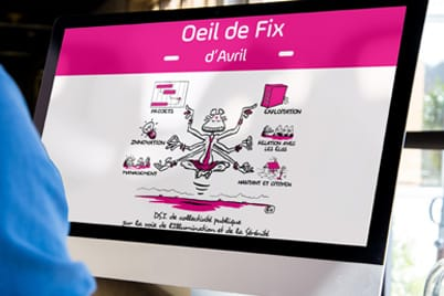 Oeil de fix dsi collectivite ppm
